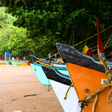 Colours of Om beach