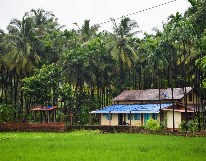 Homes in Guhaghar