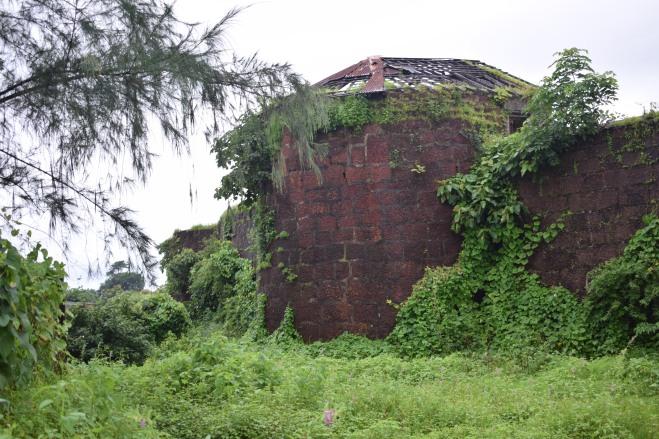 Walls of Jaigad Fort