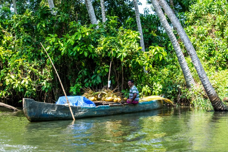 Backwaters of Poovar
